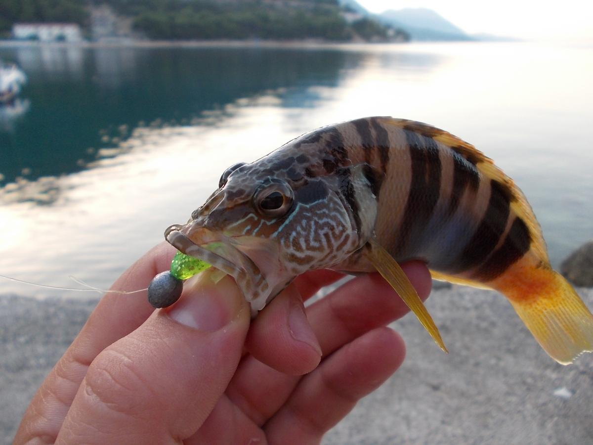 UL pergetés az Adriai-tengeren