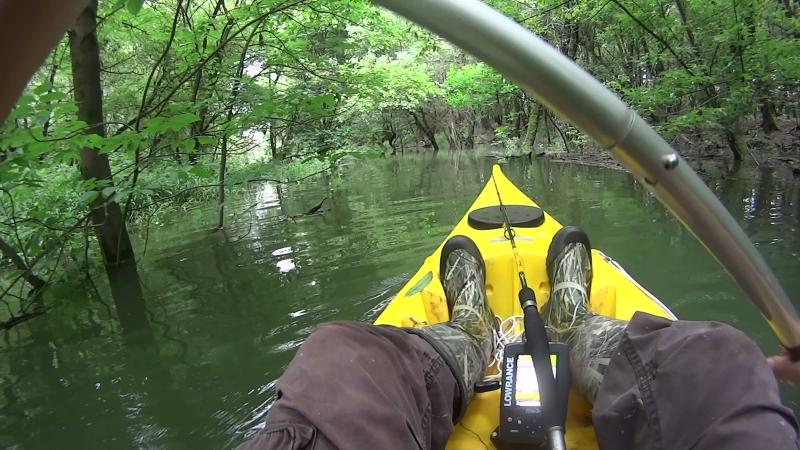 kalandozás a Duna árterében 2015.05.24.(1)