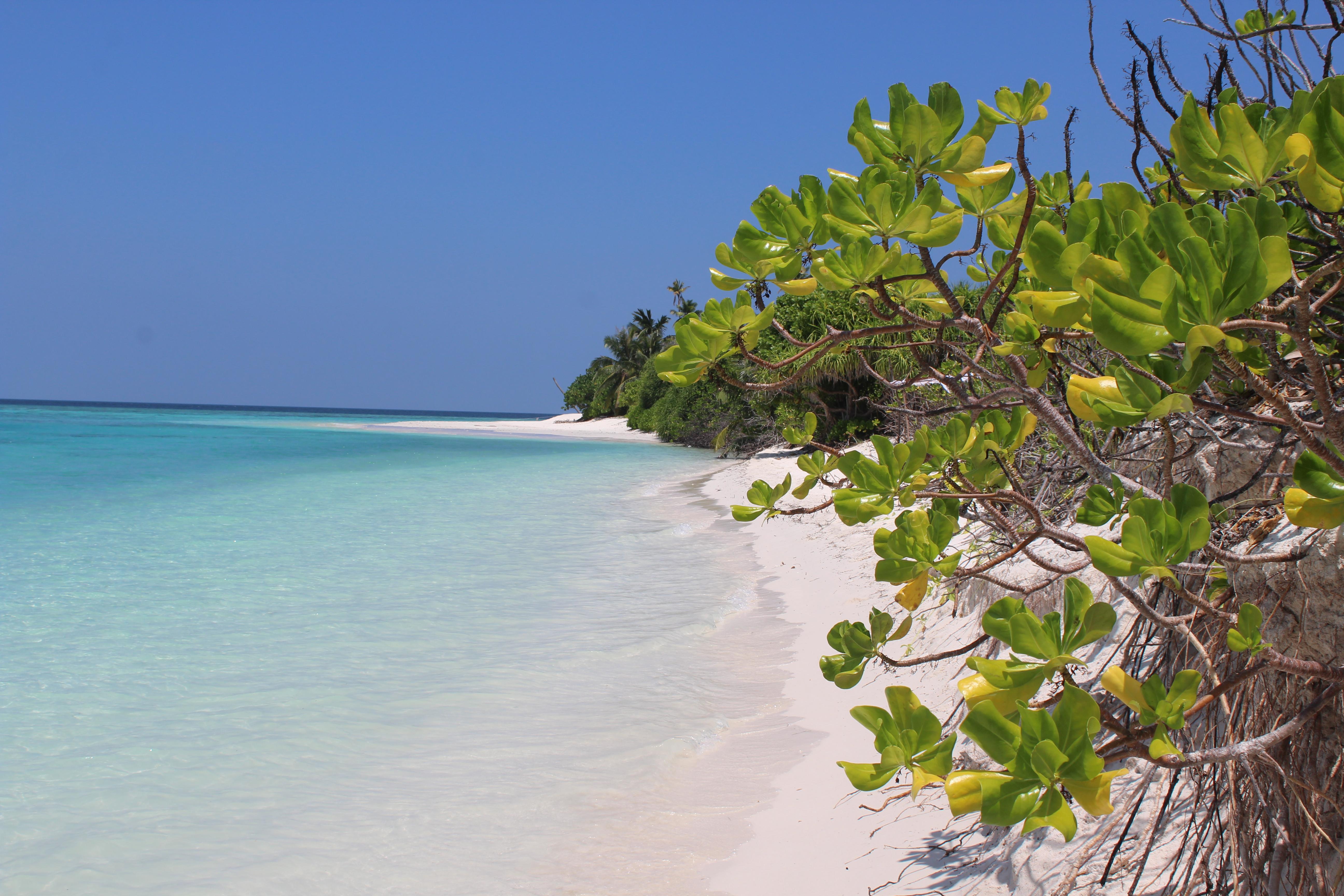 Maldív-szigeteki karantén   1. rész